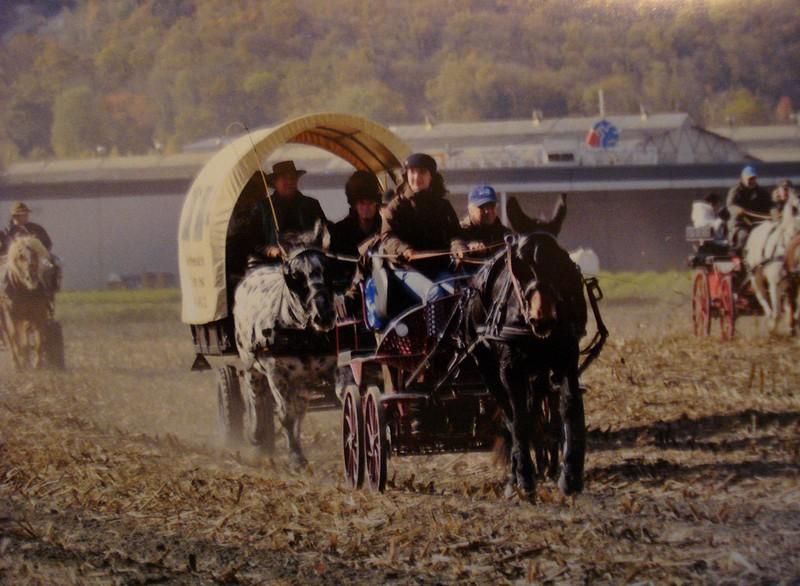 Chasse au renard 09 Photo210