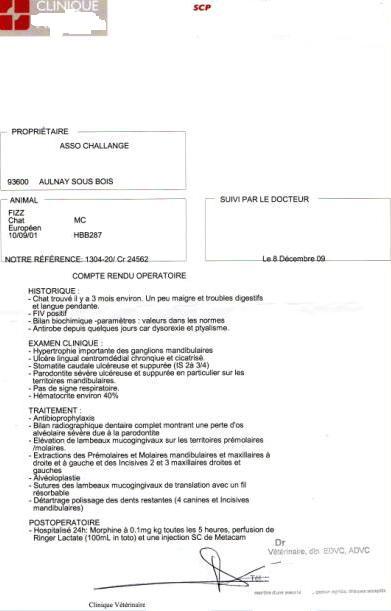 De l'aide pour notre petit Fizz SVP  (379 euro d'opération) Compte10