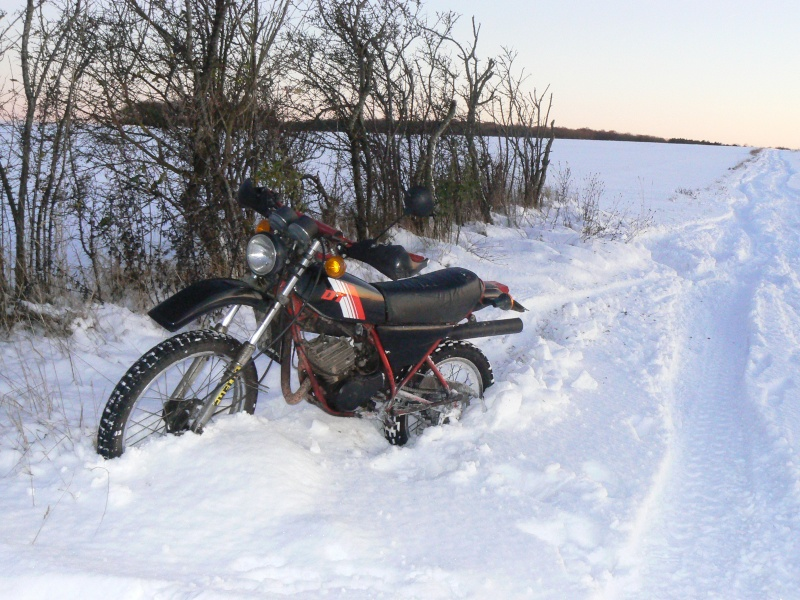 La neige dans la somme P1040613
