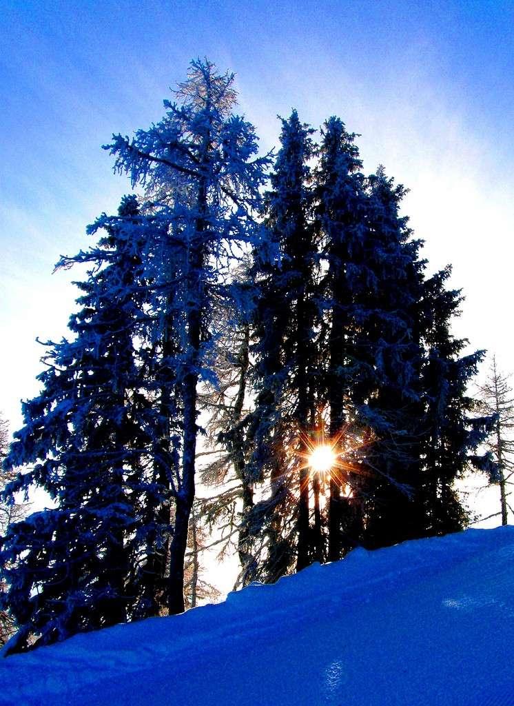 Neige et ski à l'étranger - Page 2 41876810