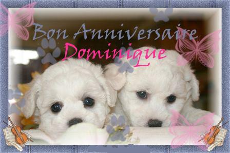 joyeux anniversaire Dominique Bichon10
