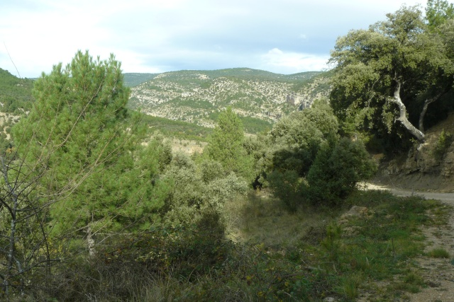 Darrera sortida (Itinerant) any 2009 P1100116