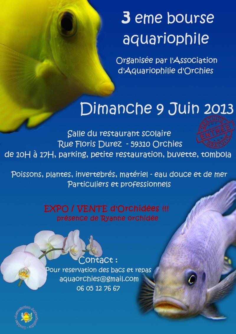 Bourse d'Orchies 9 juin 2013  Affich10