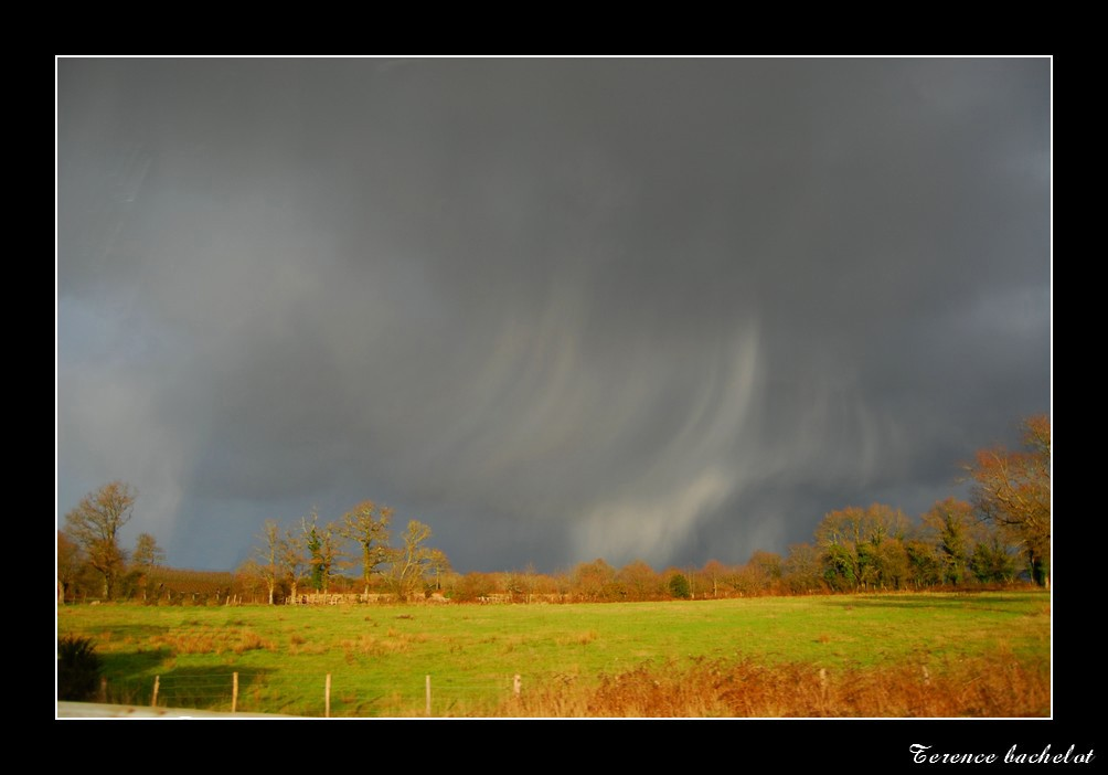 Photo avers de grésile en loire atlantique Dsc_0511