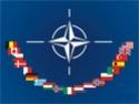 Mélanges Tamiya : Véhicules OTAN / NATO Vehicles Nato10
