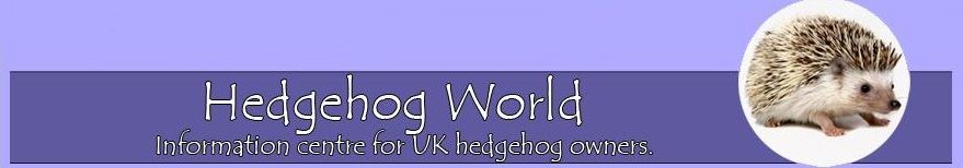 Hedgehog world forum