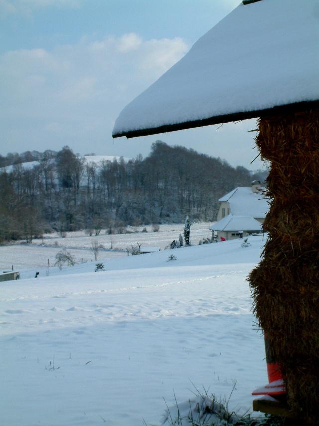 Mes taches de bonheur sous la neige !! Dscf0038