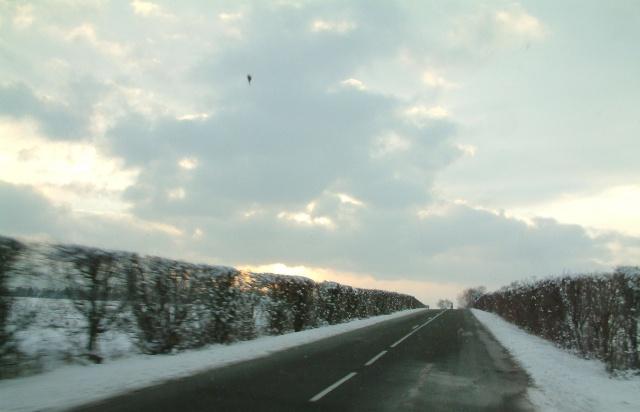 Mes taches de bonheur sous la neige !! Dscf0041