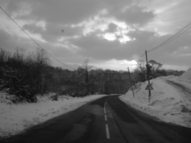 Mes taches de bonheur sous la neige !! Dscf0042