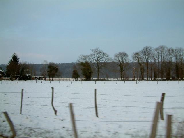 Mes taches de bonheur sous la neige !! Dscf0043