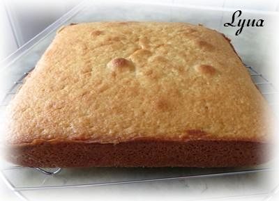 Gâteau Battenberg au chocolat et amandes Batten11