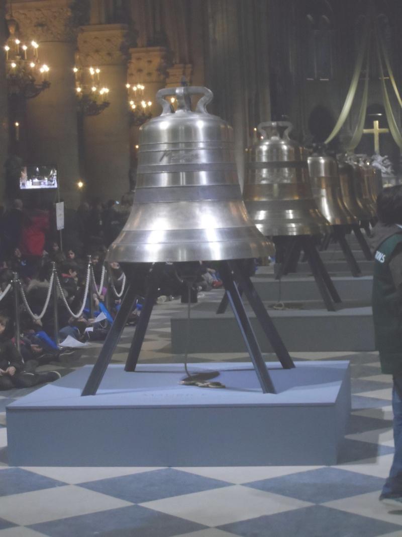 Les cloches de Notre dame Sam_1613