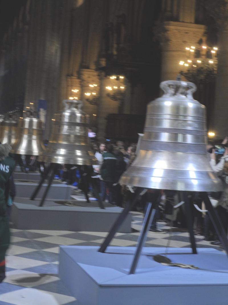 Les cloches de Notre dame Sam_1618