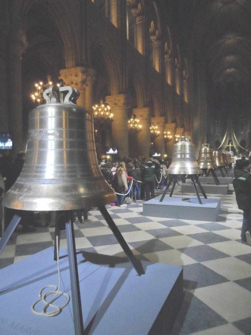 Les cloches de Notre dame Sam_1619