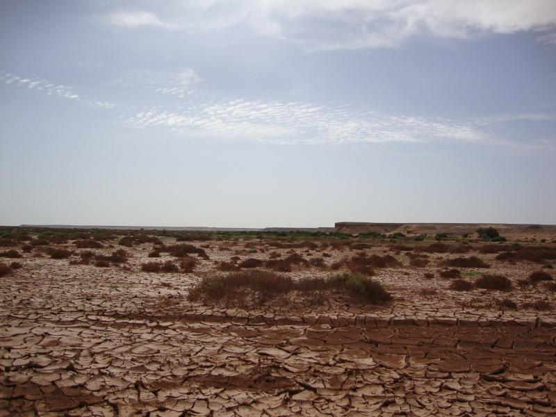 retour maroc 2012 - Page 4 Dsc03411