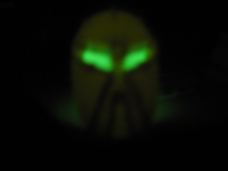[Sets] Crâne de Glatorian phosphoréscent - Page 6 Dscn1323