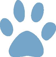 New dog pics Dogpaw11