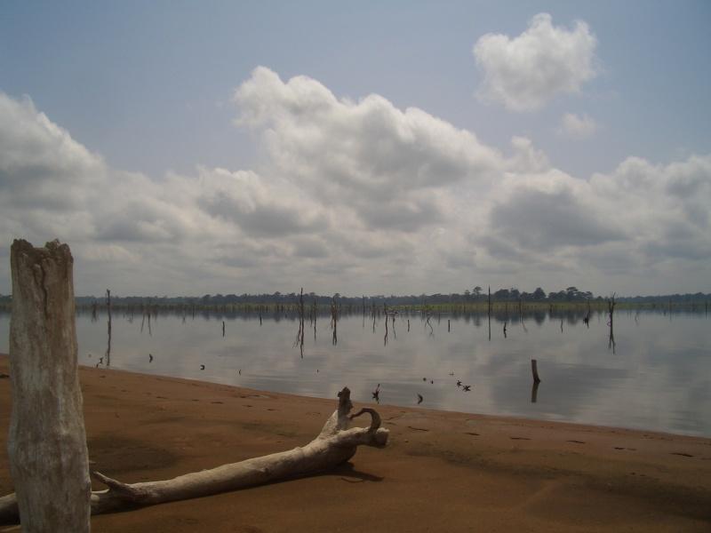L'afrique de l'ouest Lac_310