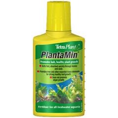 Plant Food Plant_10