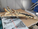 nouveau Tomcat sur mes chaînes de montage  F-14a_25