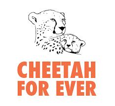 KIKIVIENT le mardi des semaines paires - Page 16 Cheeta10