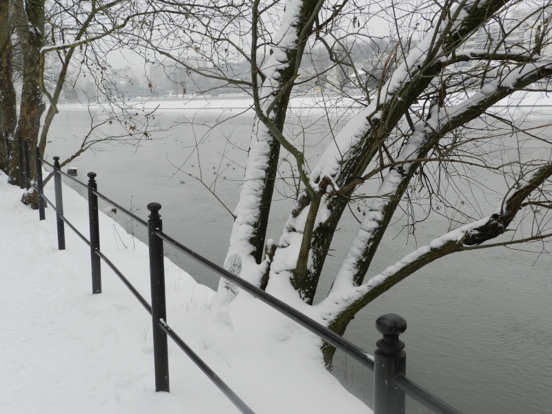 La neige sur l'île de la Jatte (20 janvier 2013) Levall14