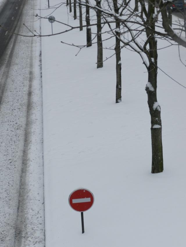 La neige sur l'île de la Jatte (20 janvier 2013) Levall25