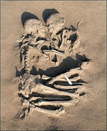 Le vase brisé - Sully Prudhomme Squele11