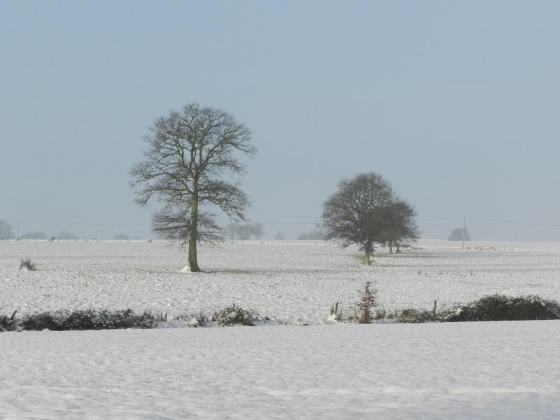 neige ludique en Mayenne (26 janvier 2013) Vauvar12