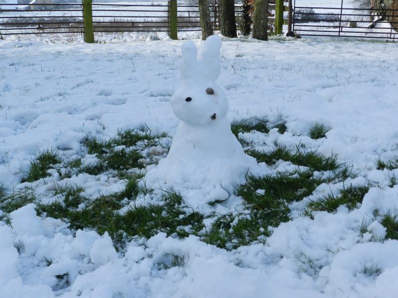 neige ludique en Mayenne (26 janvier 2013) Vauvar17
