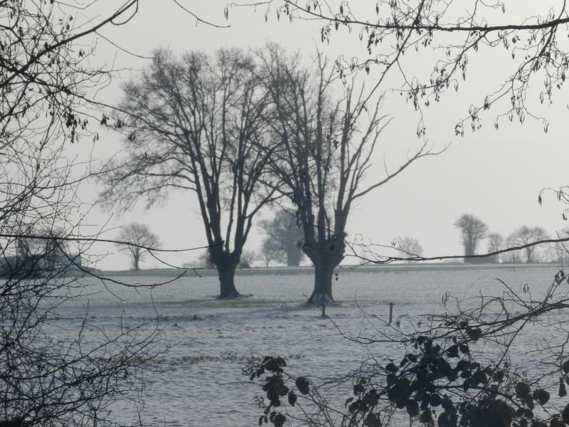 neige ludique en Mayenne (26 janvier 2013) Vauvar21
