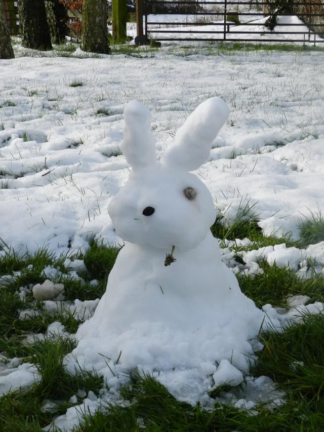 neige ludique en Mayenne (26 janvier 2013) Vauvar29