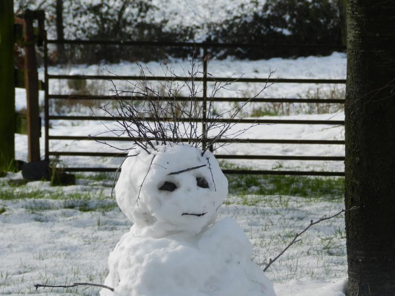 neige ludique en Mayenne (26 janvier 2013) Vauvar30