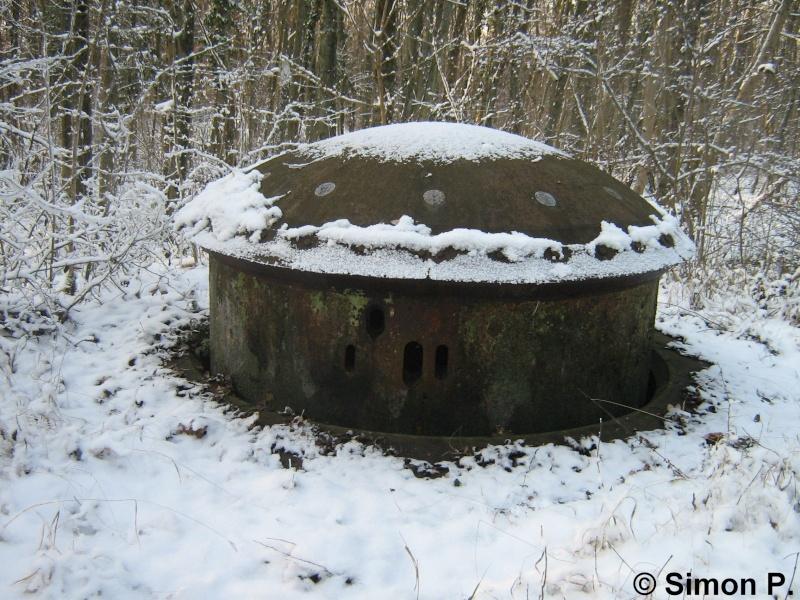 La Ligne Maginot : Le Secteur Fortifié de Faulquemont (SFF) - Page 1 Img_5223