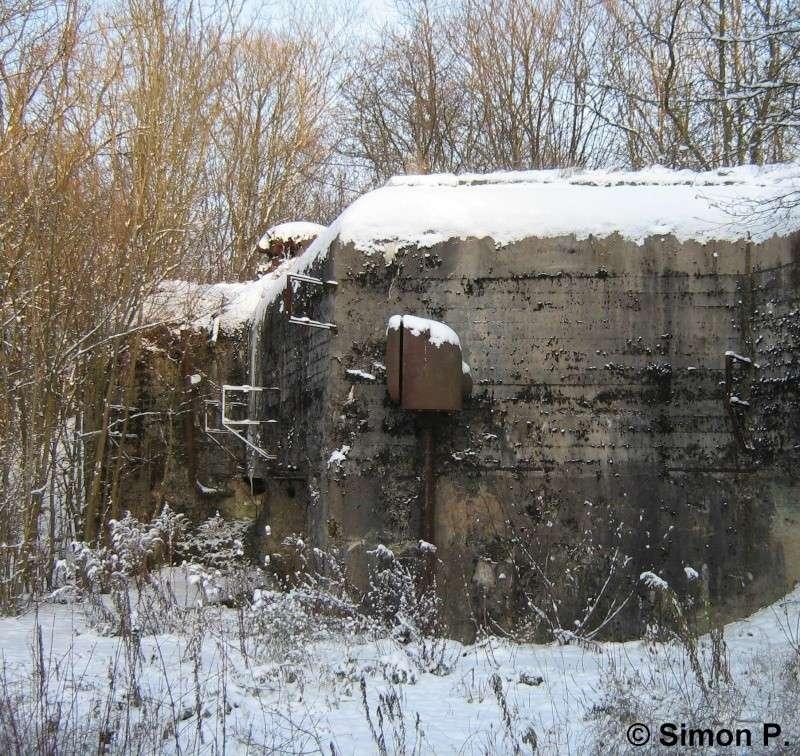 La Ligne Maginot : Le Secteur Fortifié de Faulquemont (SFF) - Page 1 Img_5224