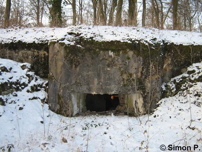 La Ligne Maginot : Le Secteur Fortifié de Faulquemont (SFF) - Page 1 Img_5317