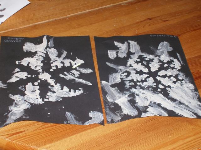 Flocon de neige Pc030010