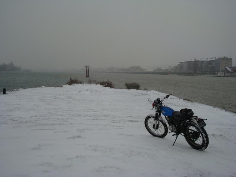 concours photo (janv 2010)votre timono et la neige Dsc02310