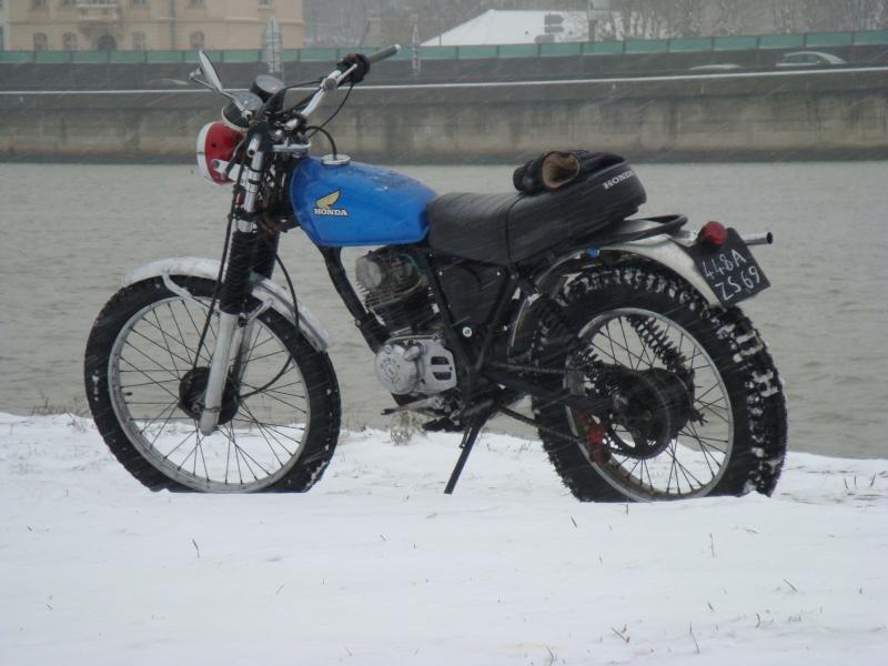 concours photo (janv 2010)votre timono et la neige Dsc02311