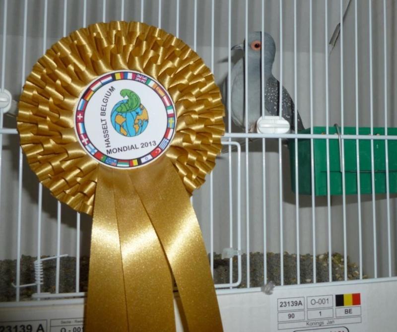 Mondial 2013 à Hasselt (palmarès, photos, commentaires). Diam_p12