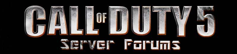 Call of Duty 5 Server