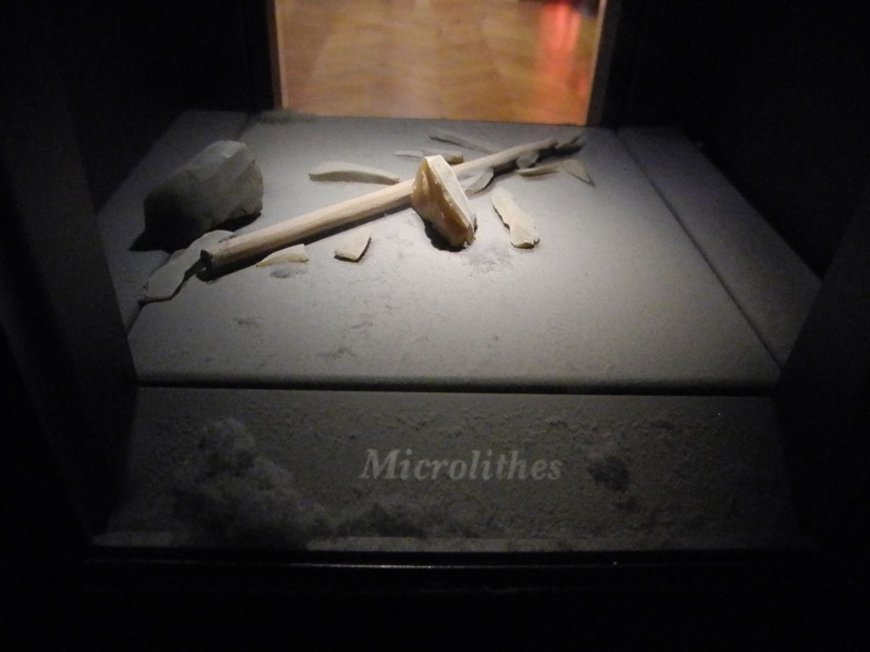 microlithes ... Poussi10
