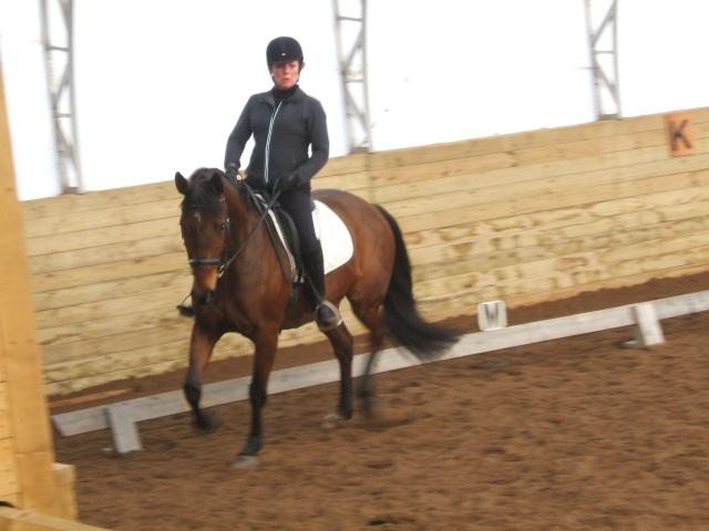 Clinique dressage avec Cindy Ishoy-7-8 nov 2009 A_trie14