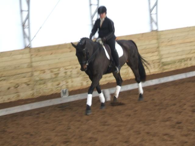 Clinique dressage avec Cindy Ishoy-7-8 nov 2009 A_trie18