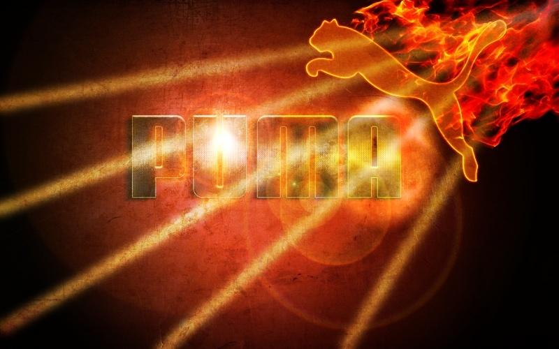 [galerie]hpro Puma_p10