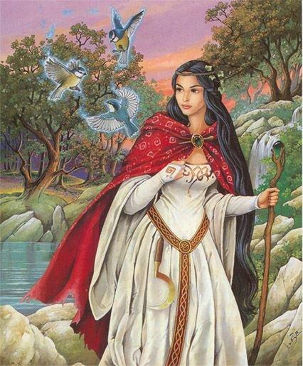 Les Druides N1550312