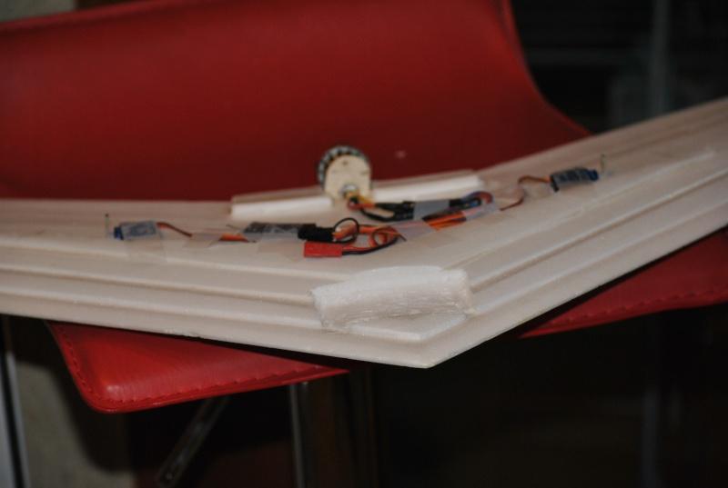 Aile volante - ticky 750 Dsc_5313