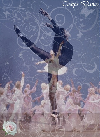 LE PLUS BEAUX MONTAGE (1) Danse_13