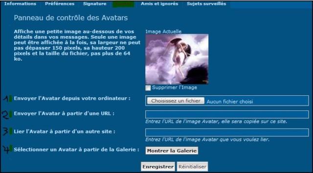 TUTORIEL >COMMENT METTRE UN AVATAR?< Captur14