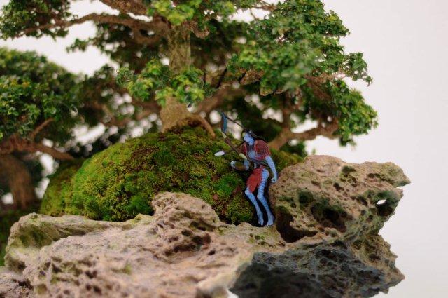 Rock planting named 'Pandora' Pandor13